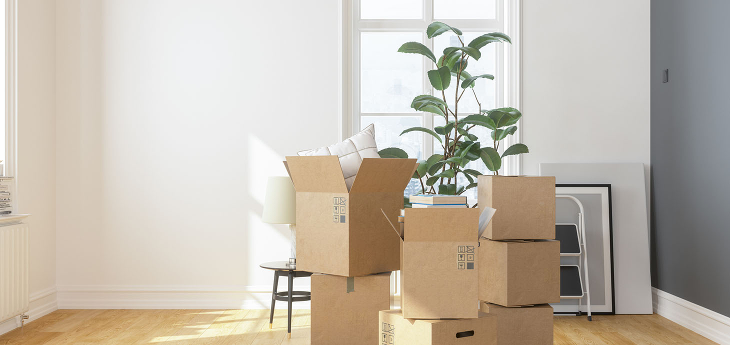 Stacks of moving boxes holding books and pillows next to household items that have not yet been packed.